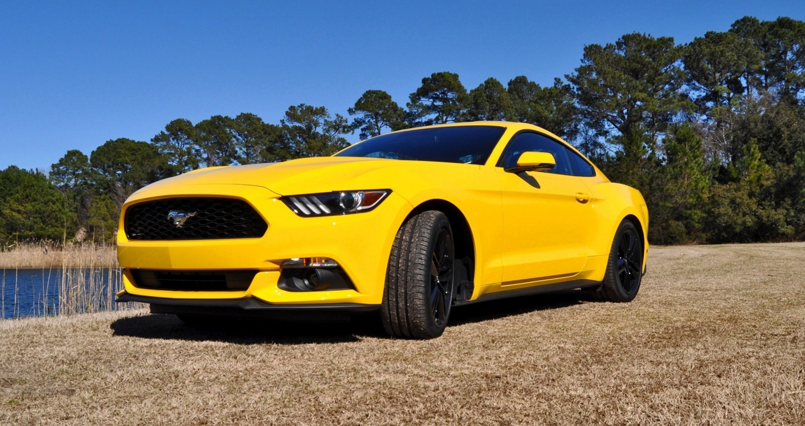 2015 Ford Mustang EcoBoost in Triple Yellow 79