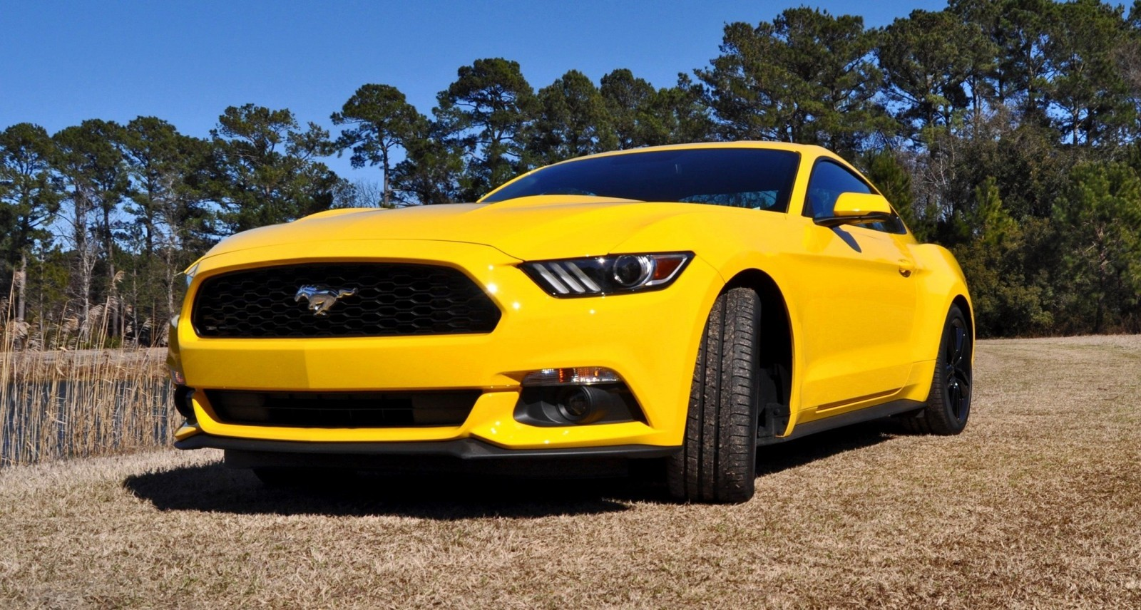 2015 ford mustang ecoboost in triple yellow 139 car revs. Black Bedroom Furniture Sets. Home Design Ideas