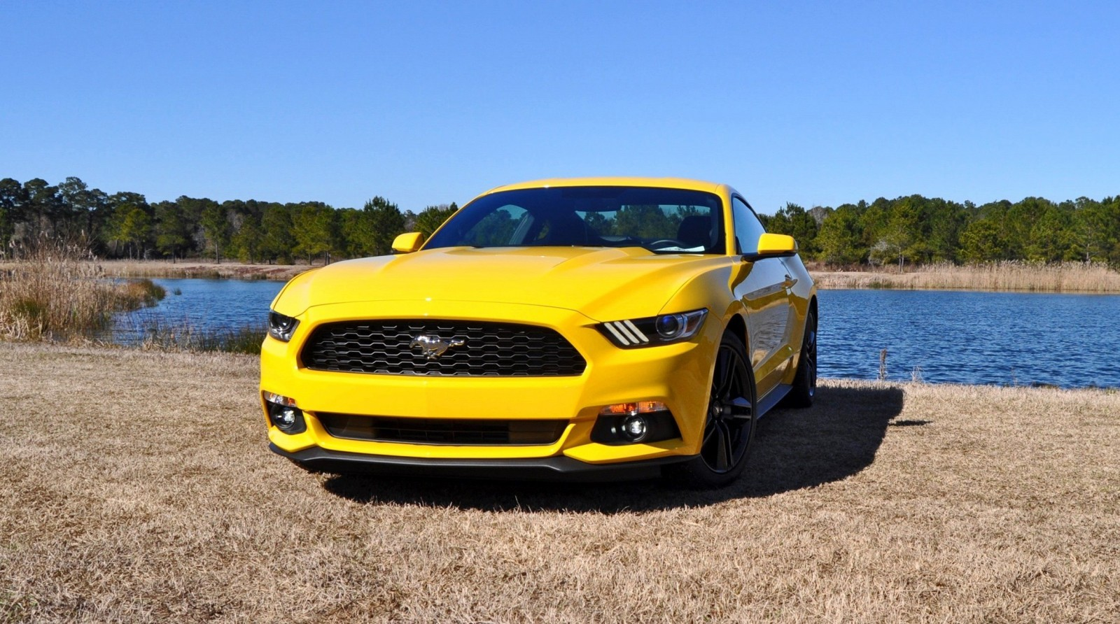 2015 Ford Mustang EcoBoost in Triple Yellow 84