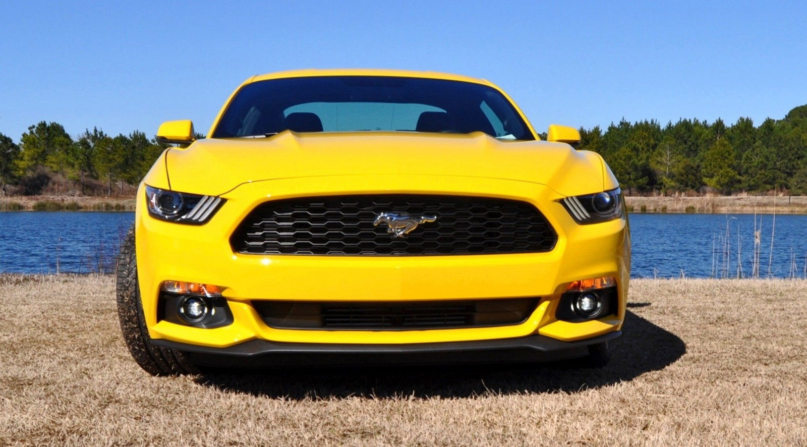 2015 Ford Mustang EcoBoost in Triple Yellow 87