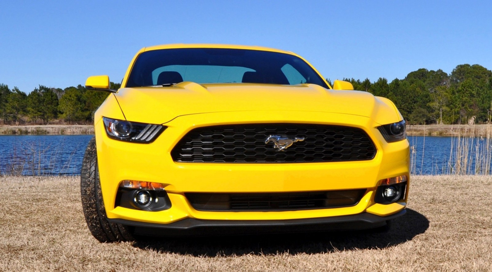 2015 Ford Mustang EcoBoost in Triple Yellow 88