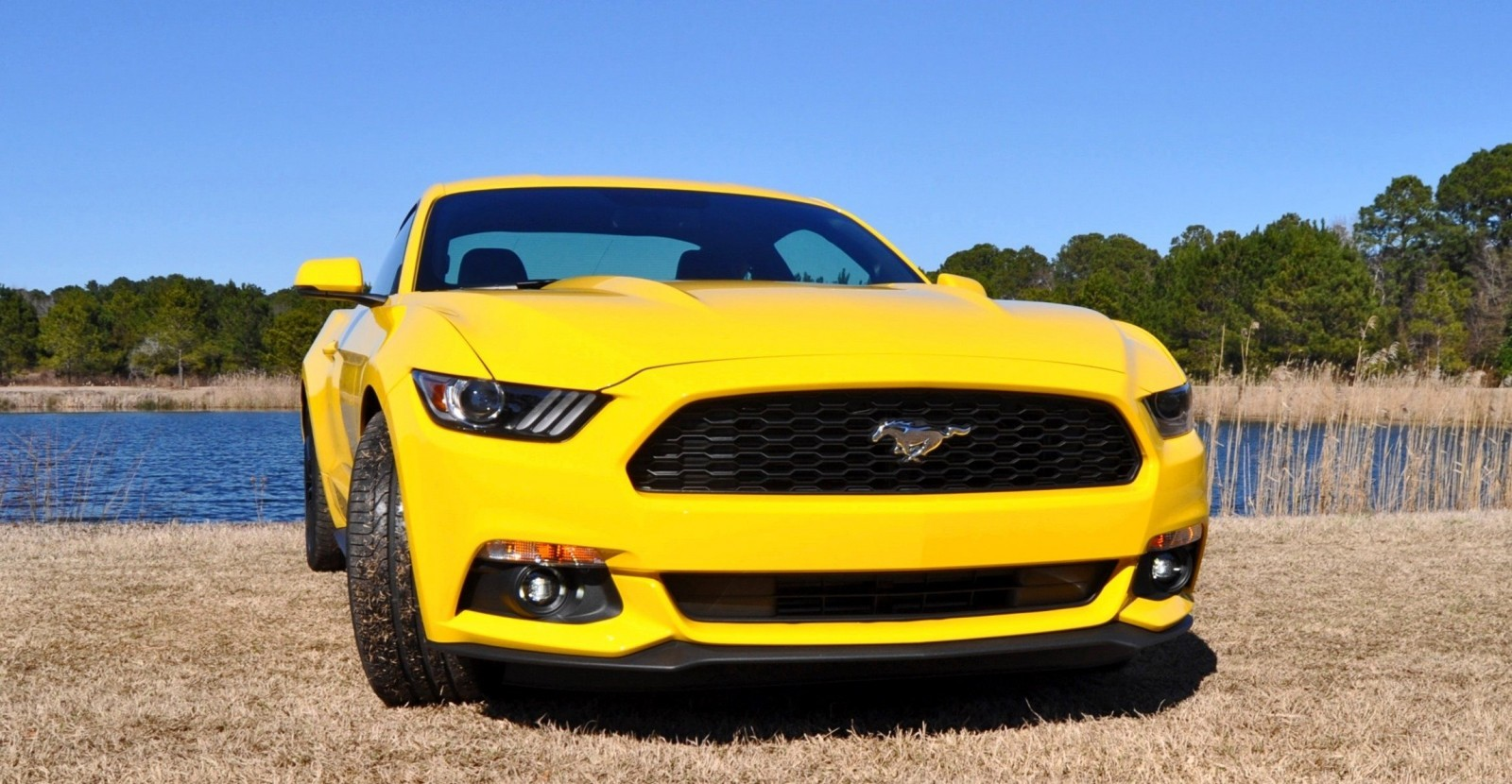 2015 Ford Mustang EcoBoost in Triple Yellow 89