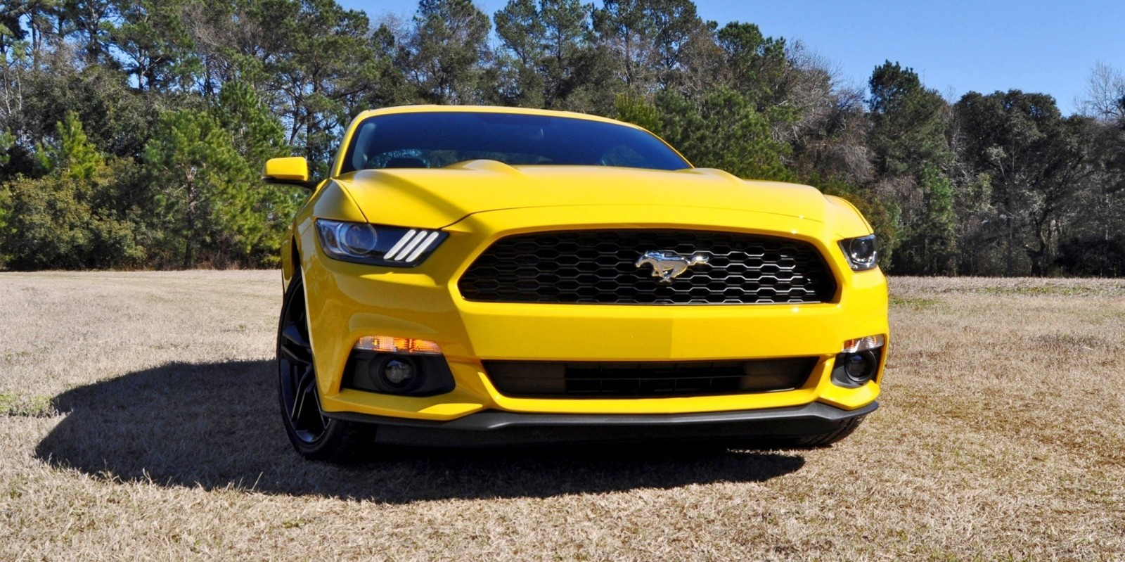 2015 Ford Mustang EcoBoost in Triple Yellow 9