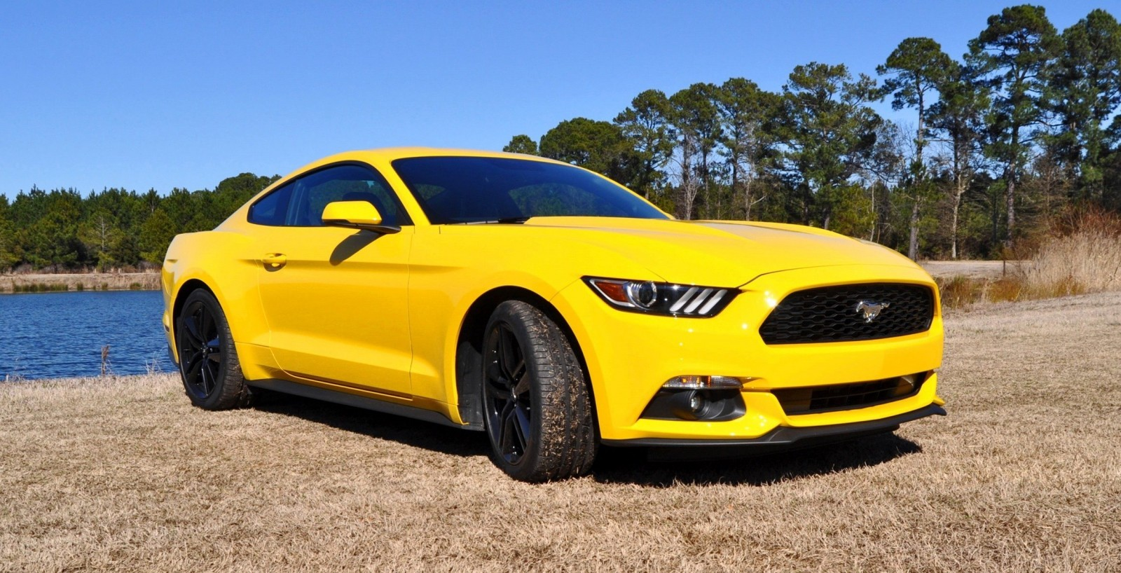 2015 Ford Mustang EcoBoost in Triple Yellow 92