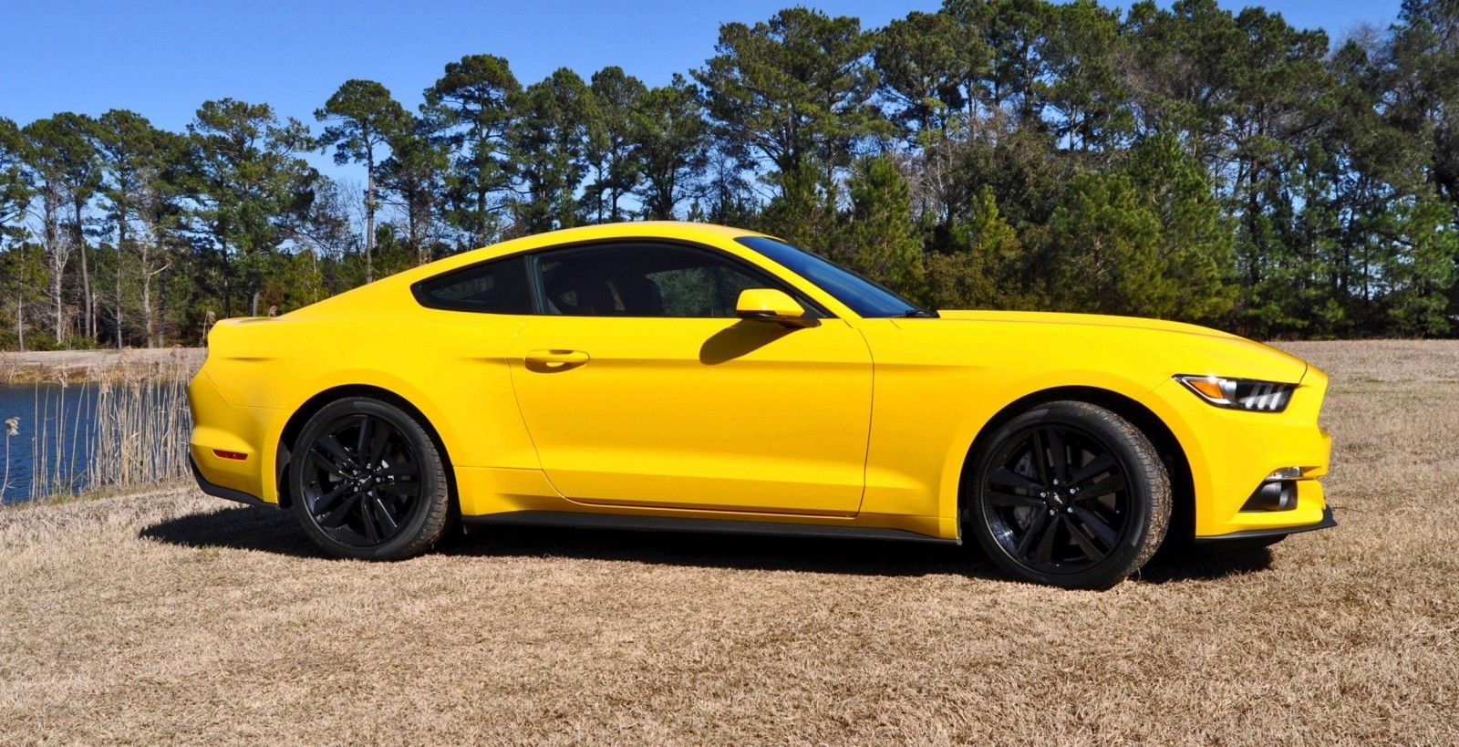 2015 Ford Mustang EcoBoost in Triple Yellow 94