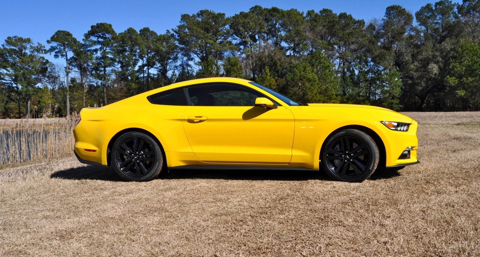 2015 Ford Mustang EcoBoost in Triple Yellow 95