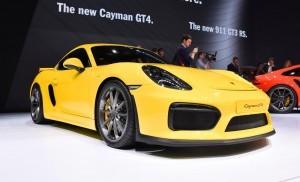 2015 Porsche Cayman GT4 13