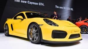 2015 Porsche Cayman GT4 14