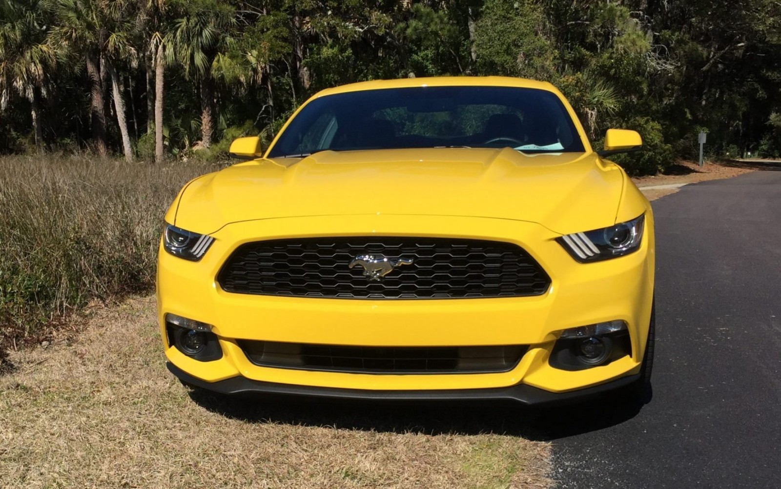 hd road test review 2015 ford mustang ecoboost in triple yellow with performance pack 13. Black Bedroom Furniture Sets. Home Design Ideas
