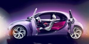2009 Citroen REVOLTe 3
