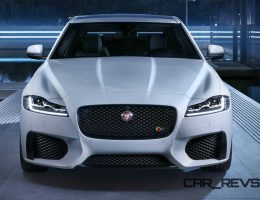 2016 Jaguar XF Thinks It Is a Porsche 911; We Break The Bad News To Bad Mr. Kitty