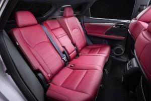 2016 Lexus RX350 F Sport 14