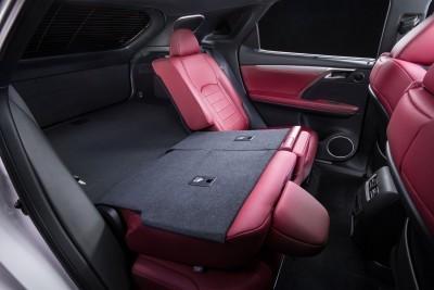 2016 Lexus RX350 F Sport 15