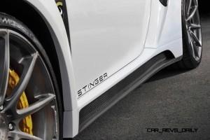 TOPCAR Stinger GTR 911 Turbo 18