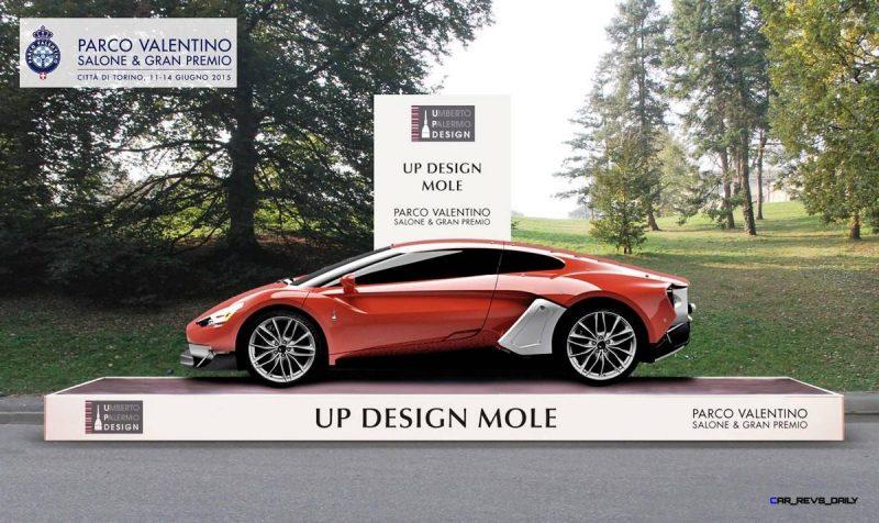 2015 UP Design Mole 5