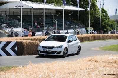 Goodwood Festival of Speed 2015 - DAY TWO Gallery + Action GIFS 44