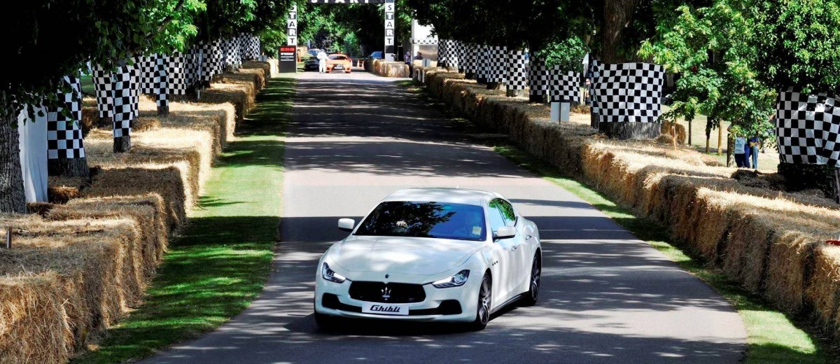 Goodwood Festival of Speed 2015 - New Cars 53