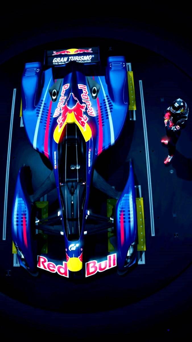 2010 Red Bull X1