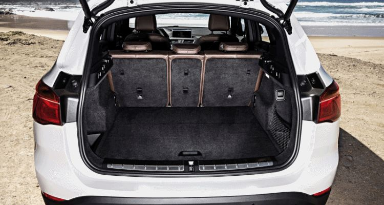 x1 trunk