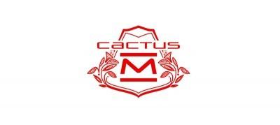 2015 Citroen Cactus M Concept 1
