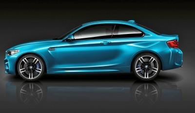 2016 BMW M2  52