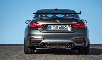 2016 BMW M4 GTS 14