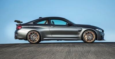2016 BMW M4 GTS 16