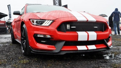 2016 SHELBY GT350 Ford Mustangs Snapped in Flesh at Petit Le Mans 31