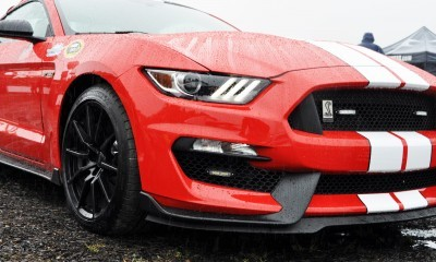 2016 SHELBY GT350 Ford Mustangs Snapped in Flesh at Petit Le Mans 32