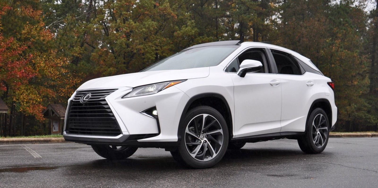 2016 lexus rx350 eminent white pearl 41. Black Bedroom Furniture Sets. Home Design Ideas