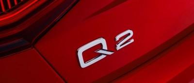 2017 Audi Q2 106
