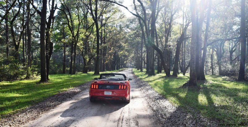 2016 Ford Mustang GT Convertible Botany Bay 12