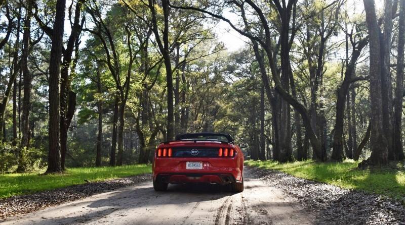 2016 Ford Mustang GT Convertible Botany Bay 13