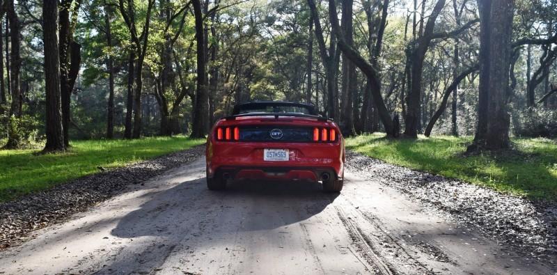 2016 Ford Mustang GT Convertible Botany Bay 17