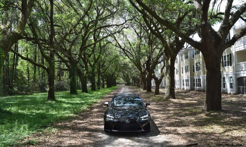 2016 Lexus GSF - South Carolina Angel Oaks 1