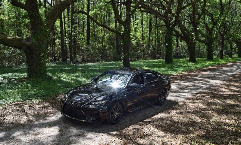 2016 Lexus GSF - South Carolina Angel Oaks 15