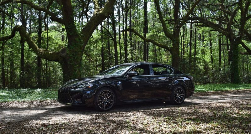 2016 Lexus GSF - South Carolina Angel Oaks 16
