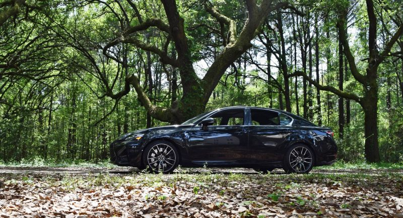 2016 Lexus GSF - South Carolina Angel Oaks 18