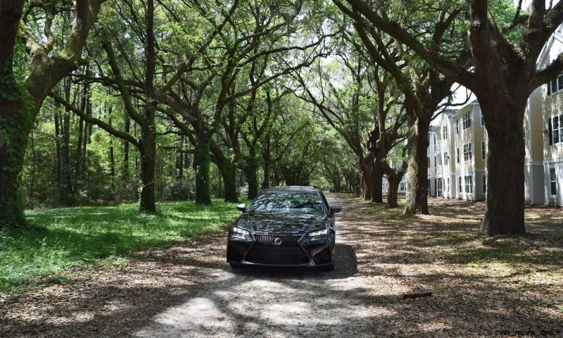 2016 Lexus GSF - South Carolina Angel Oaks 2