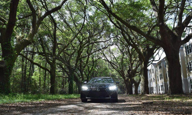 2016 Lexus GSF - South Carolina Angel Oaks 3