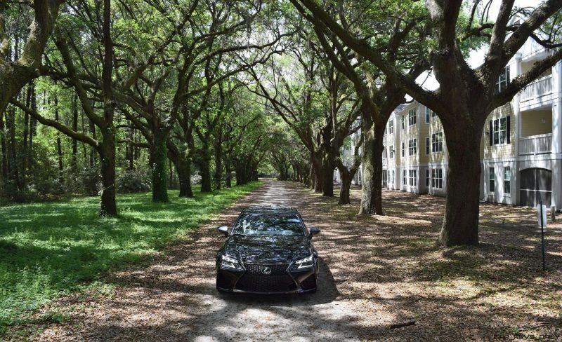 2016 Lexus GSF - South Carolina Angel Oaks 4