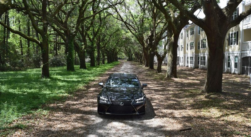 2016 Lexus GSF - South Carolina Angel Oaks 5