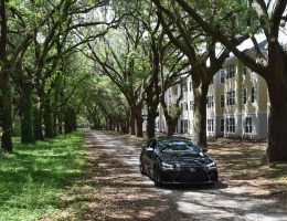 Widescreen Gallery – 2016 Lexus GS-F Meets 1700s Carolina Angel Oaks