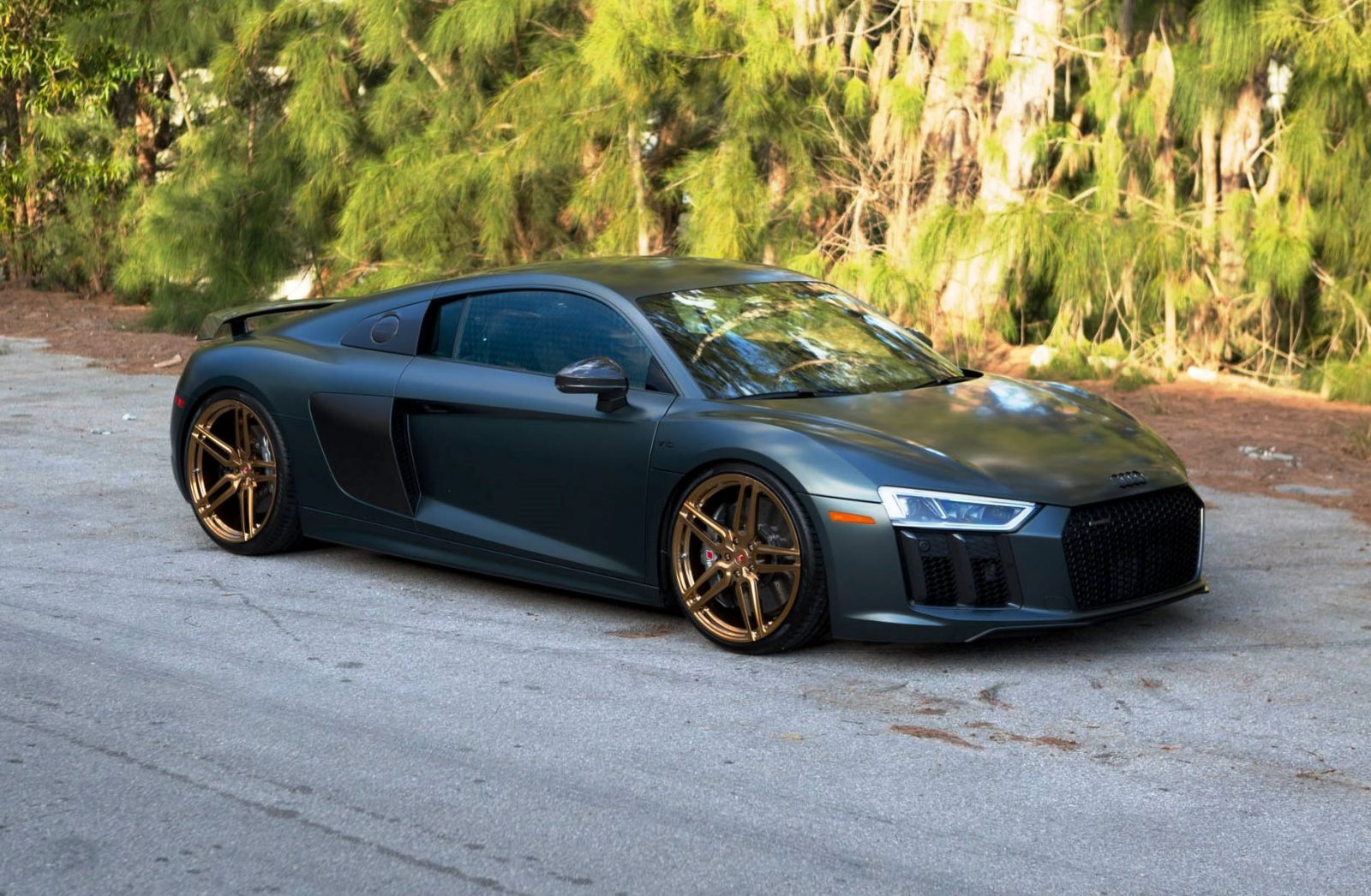Audi R8 V10 Plus - HC-1 - For Sale -_32654838175_o