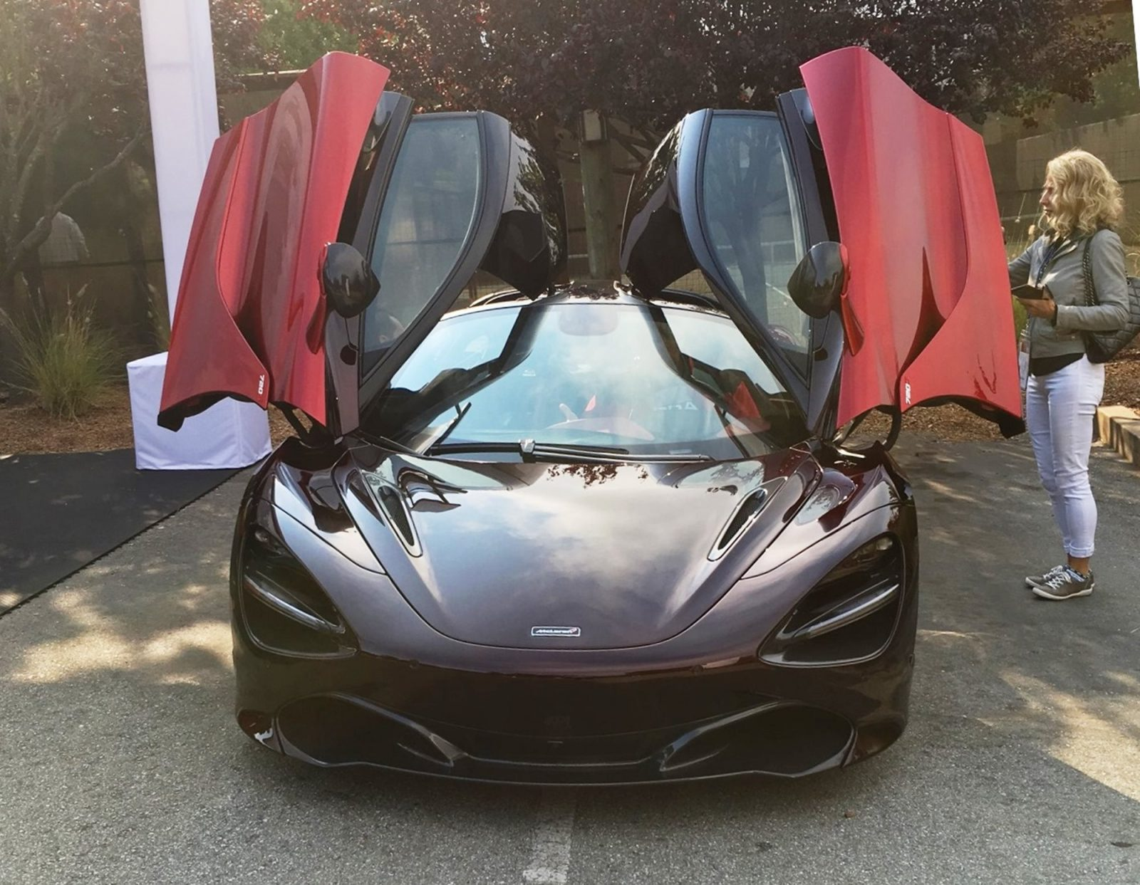 MCLAREN MADNESS - 2017 Pebble Beach VIP Villa 58
