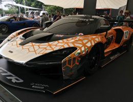 2019 McLaren SENNA GTR – Best of Goodwood Festival of Speed 2018