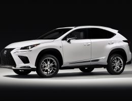 Lexus Previews 2019 NX F Sport Black Line Special Edition