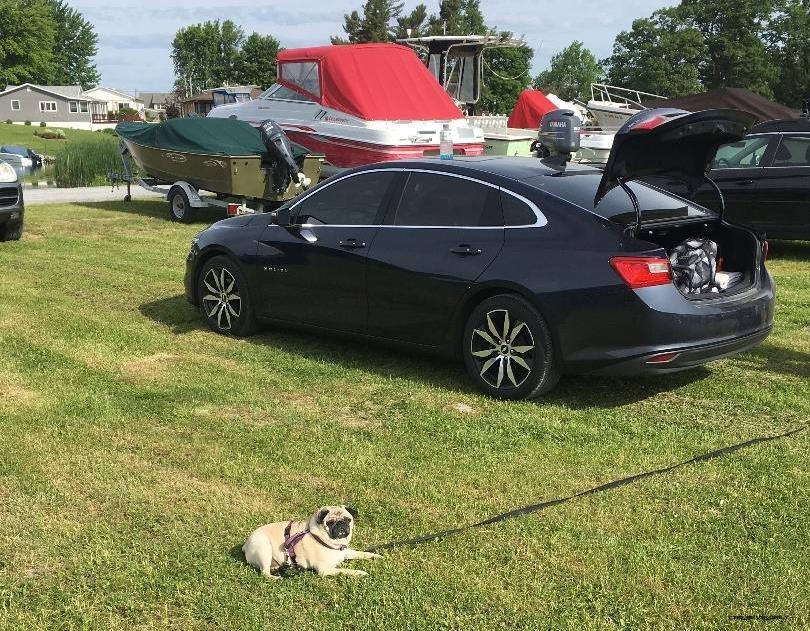 2017 Chevrolet Malibu Daily Driver Review By Jake Newvine Car Revs Daily Com