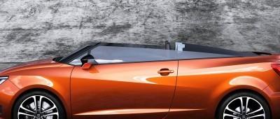 2014 SEAT Ibiza CUPSTER 14