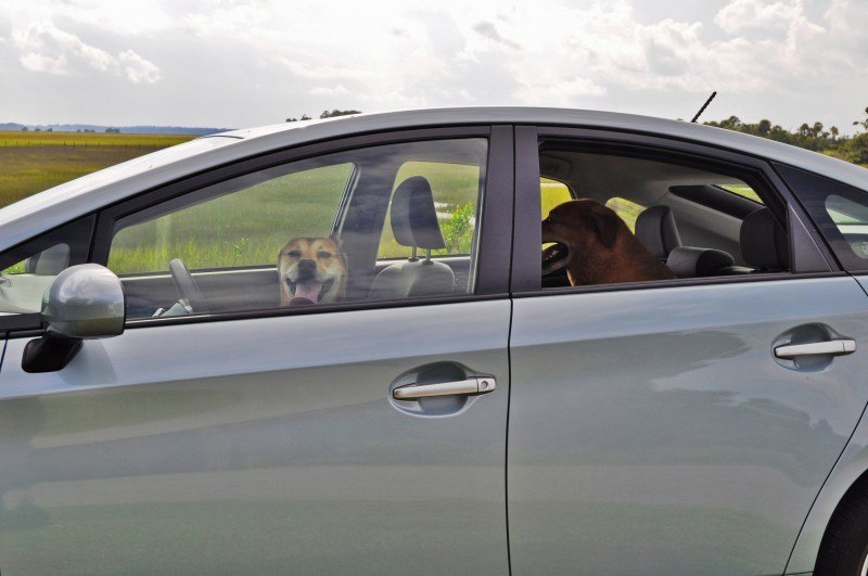 2014 Toyota Prius Plug-in Hybrid 80